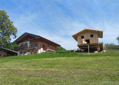 Ziegenhäuschen und Ferienhaus